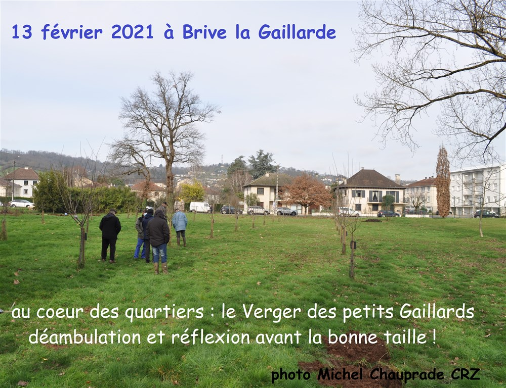 21 Verger Brive